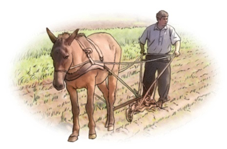 Agricultor.