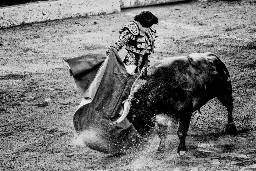 Sorteo y toreros.