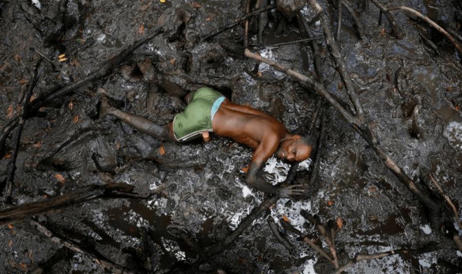 Incendios en el Amazonas fotos