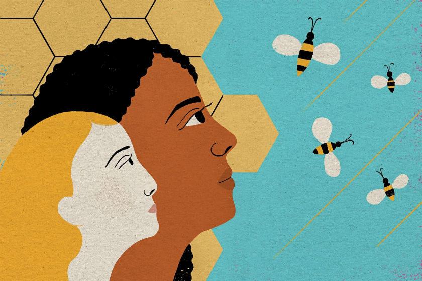 humanos y abejas