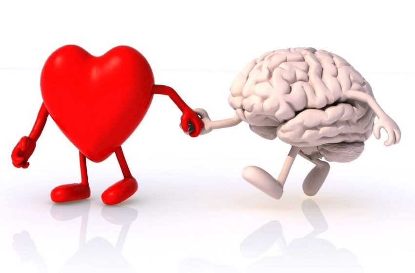 Las etapas del amor explicadas por la ciencia