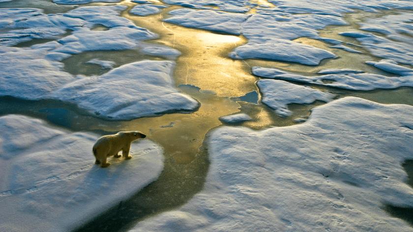 calentamiento global, cambio climatico