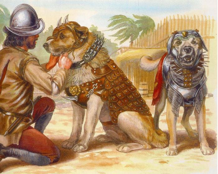 perros armados