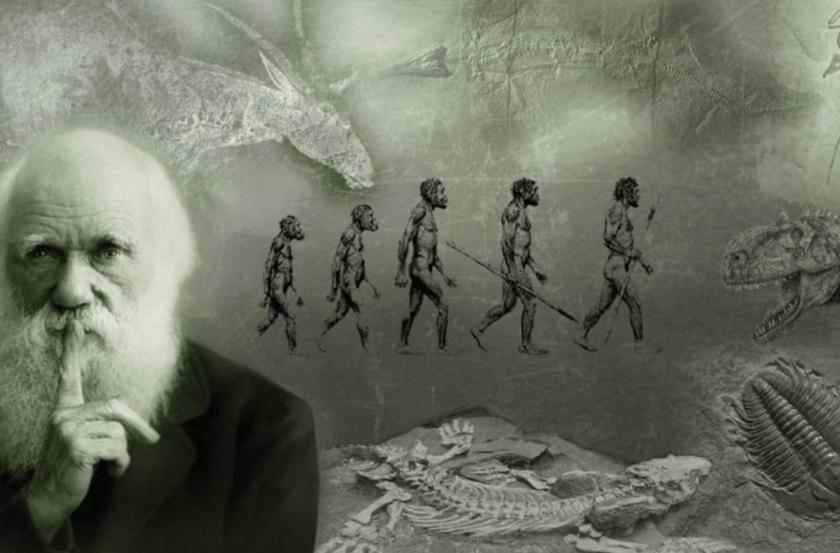 Darwin y evolucion