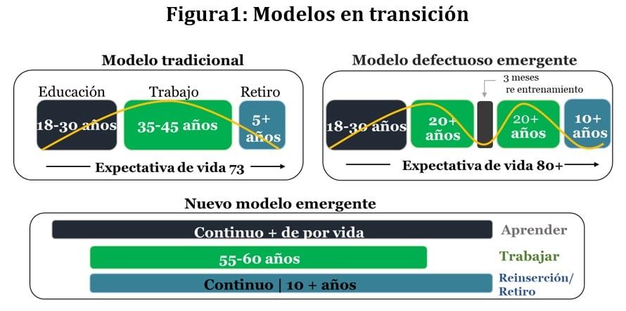 trancision modelos de educacion