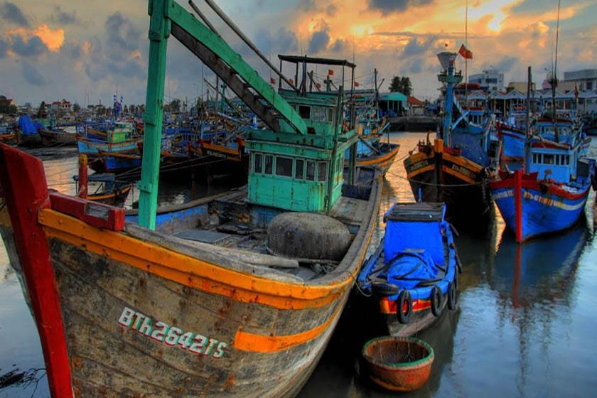 comercio vietnam tpp11