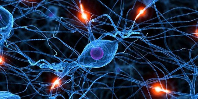 neuronas de memoria