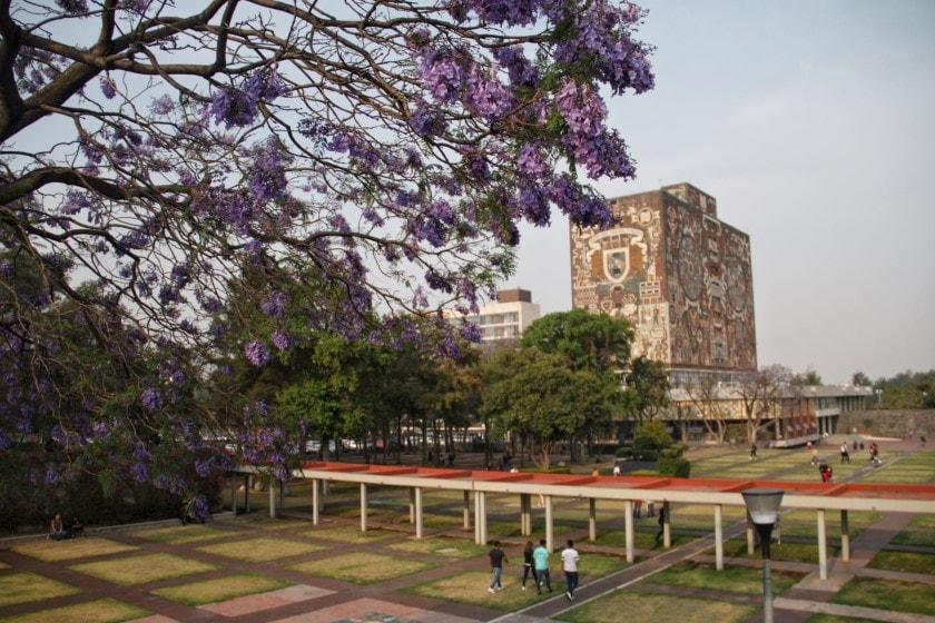 UNAM entre las mejores 100 universidades del mundo