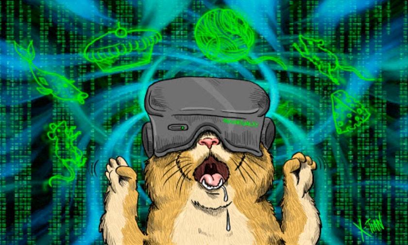 gato, realidad virtual, aumentada