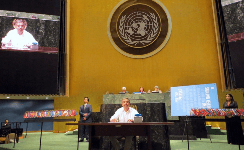 Juan Ramon de la Fuente, Consejo de Seguridad