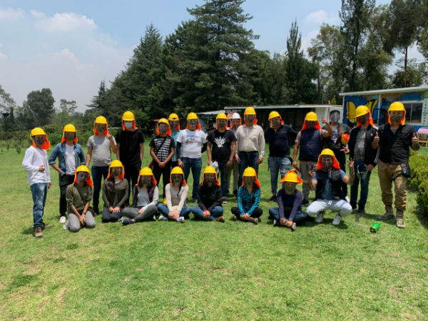 aeromexico reforestacion virtual