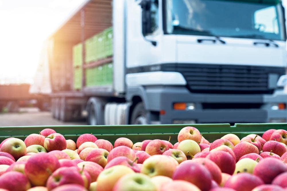 abastecimiento de alimentos en contingencia sanitaria