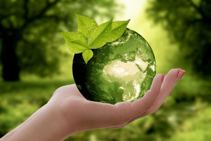 Pacto Verde en el mundo