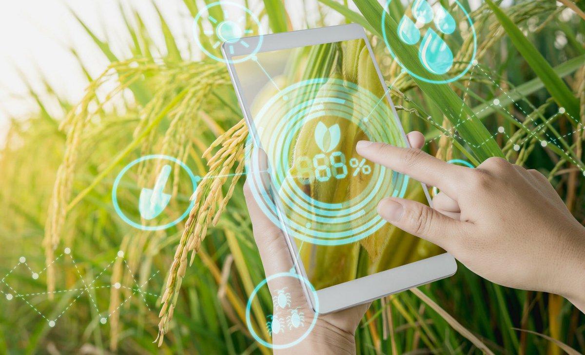 uso de tecnologías en la producción agrícola