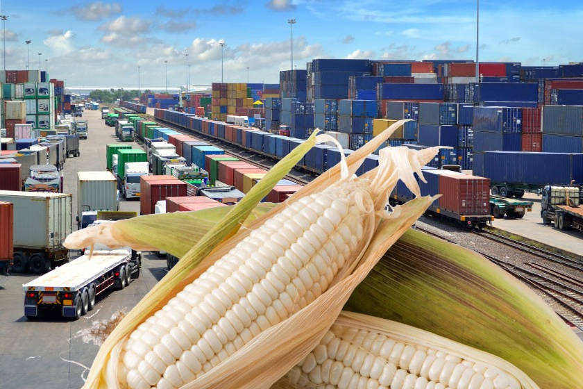 comercio agroalimentario
