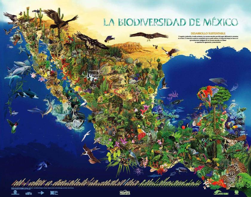 biodiversidad Mexico, mapa