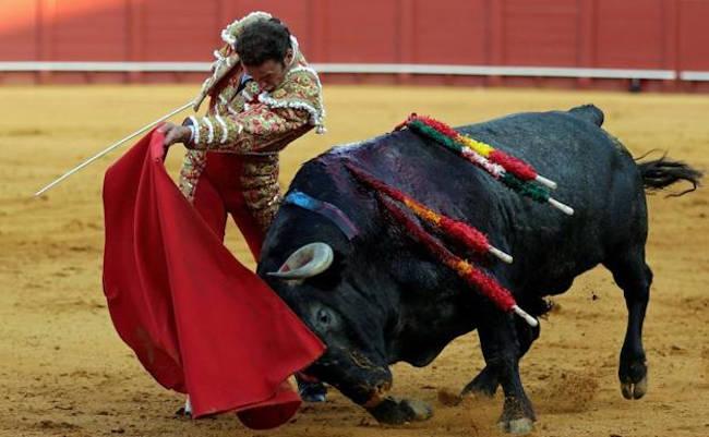 corrida de toro
