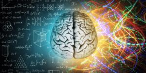 cerebro, pensamiento matematico