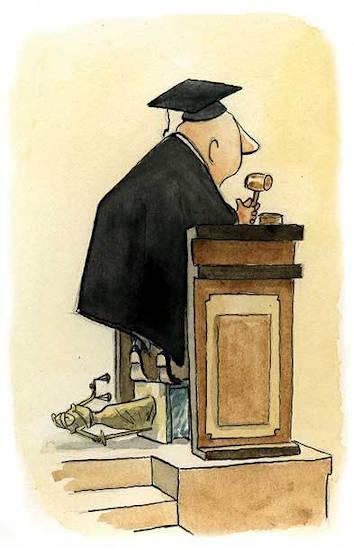 constitucion y la corte