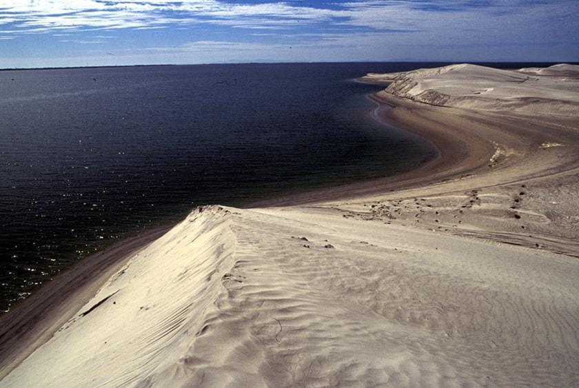 Reserva de la Biósfera el Vizcaíno