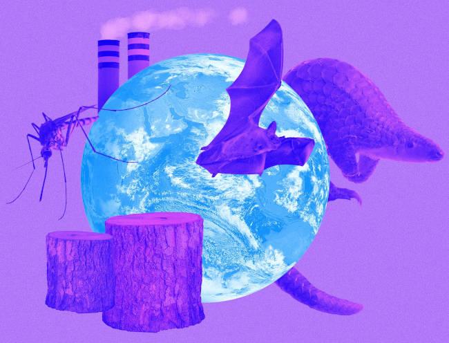 energia renovables y covid