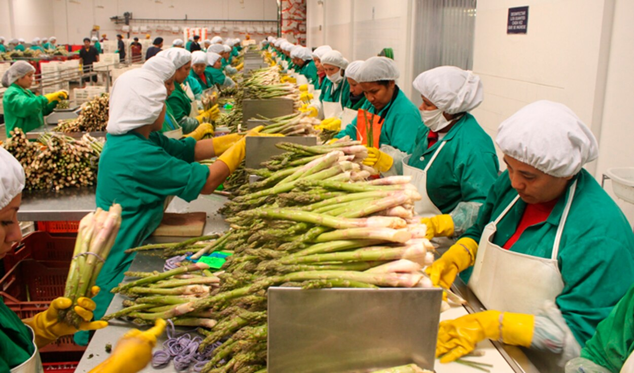 A pesar de pandemia, crece comercio agroalimentario en México