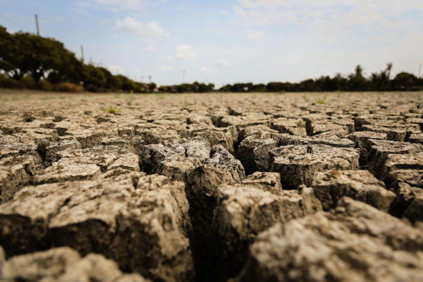 México promueve sistemas de agricultura sustentable para mitigar el cambio climático