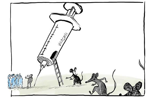vacunas y corrupcion
