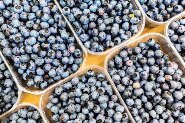 México celebra estudio que permite seguir exportando arándanos azules a USA