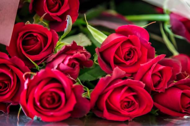 Agricultura asegura abasto de flores para 14 de febrero