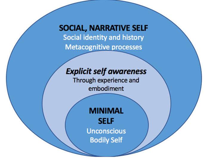niveles auto self conciencia