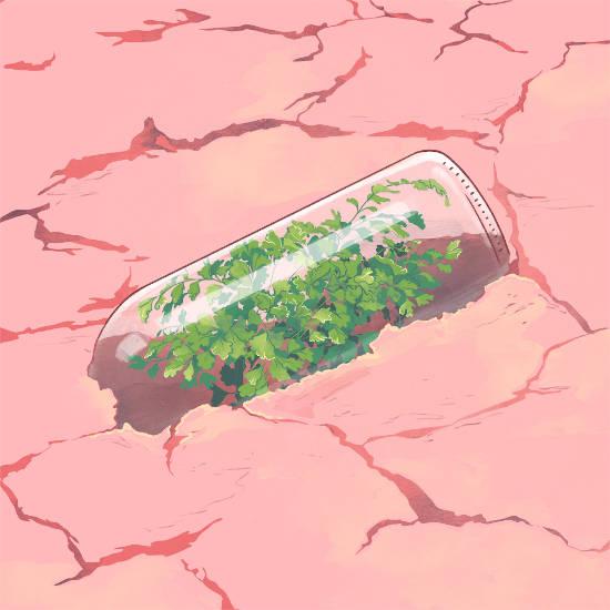 rescate del agua