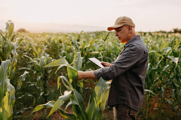 México e Israel cooperarán en intercambio comercial agroalimentario