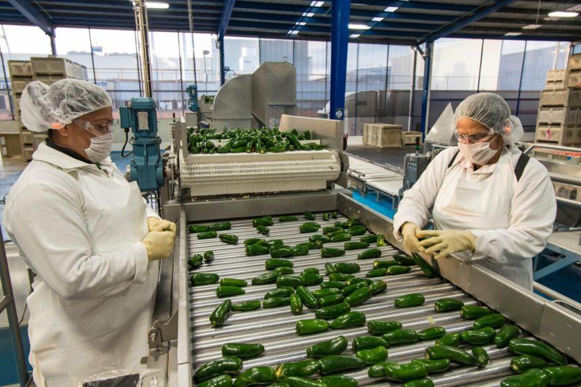 México y Estados Unidos reimpulsan relación bilateral en materia agroalimentaria